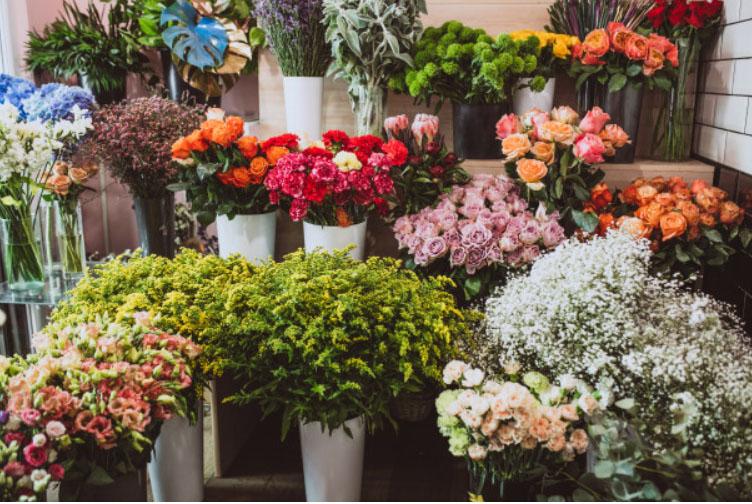 Cửa hàng hoa đẹp
