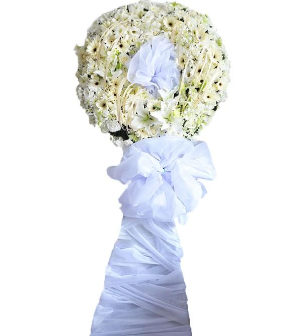 Hoa đám ma trắng tinh khôi